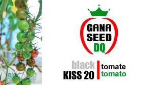 BLACK KISS 20